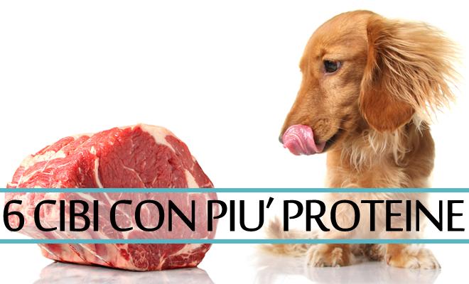 alimenti-con-piu-proteine
