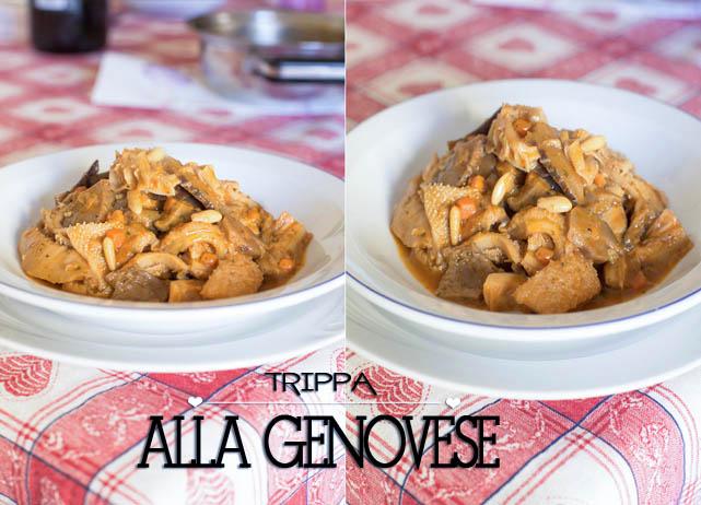 trippa-alla-genovese