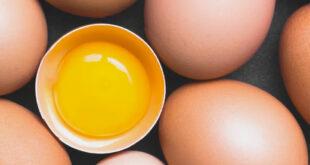 Uova e colesterolo: motivi per cui le uova fanno bene