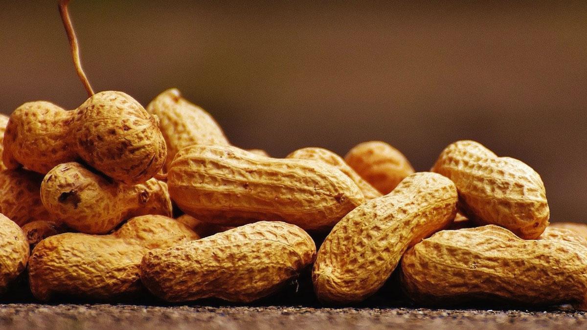 Arachidi noccioline bagigi peanuts